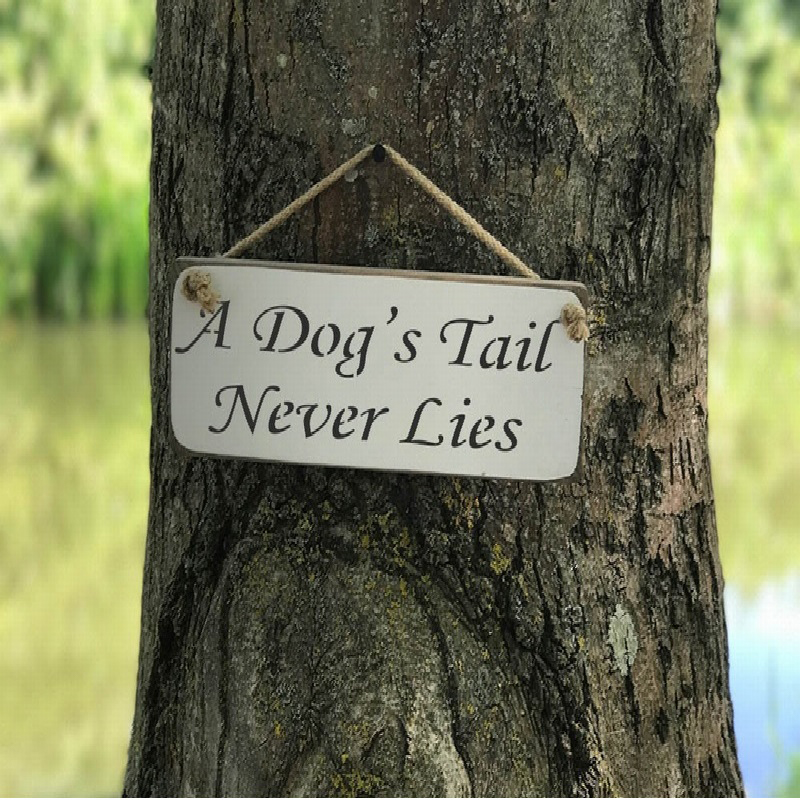 A Dog'sTail Never Lies