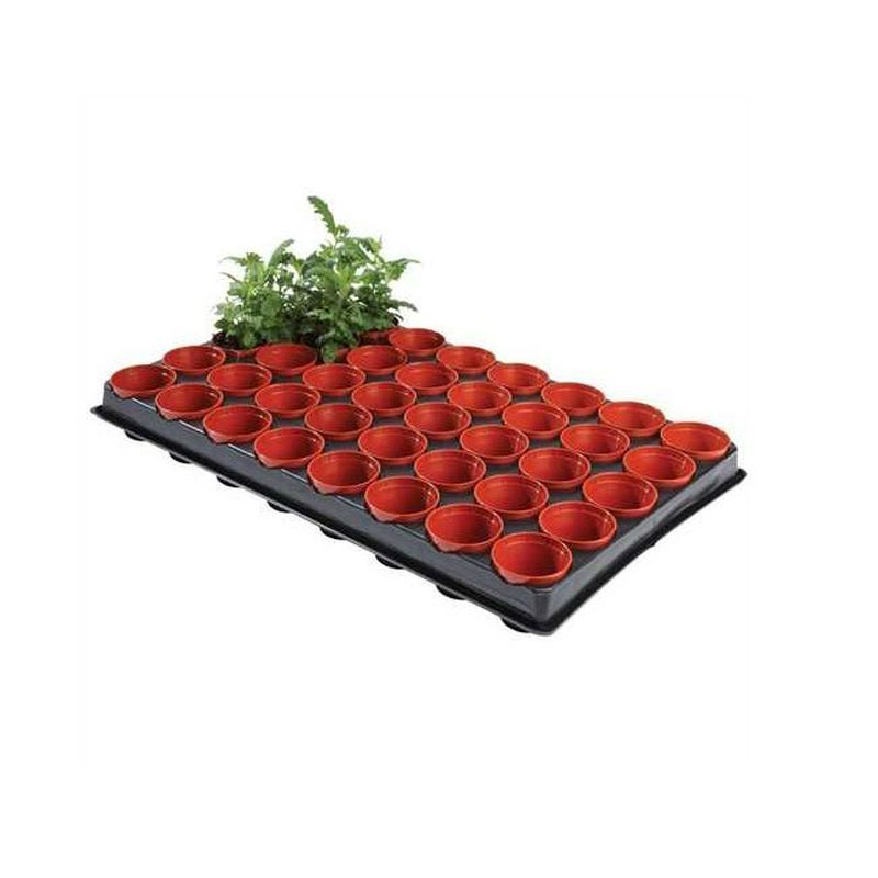 Professional Seed and Cutting Tray (40 x 6cm Pots)