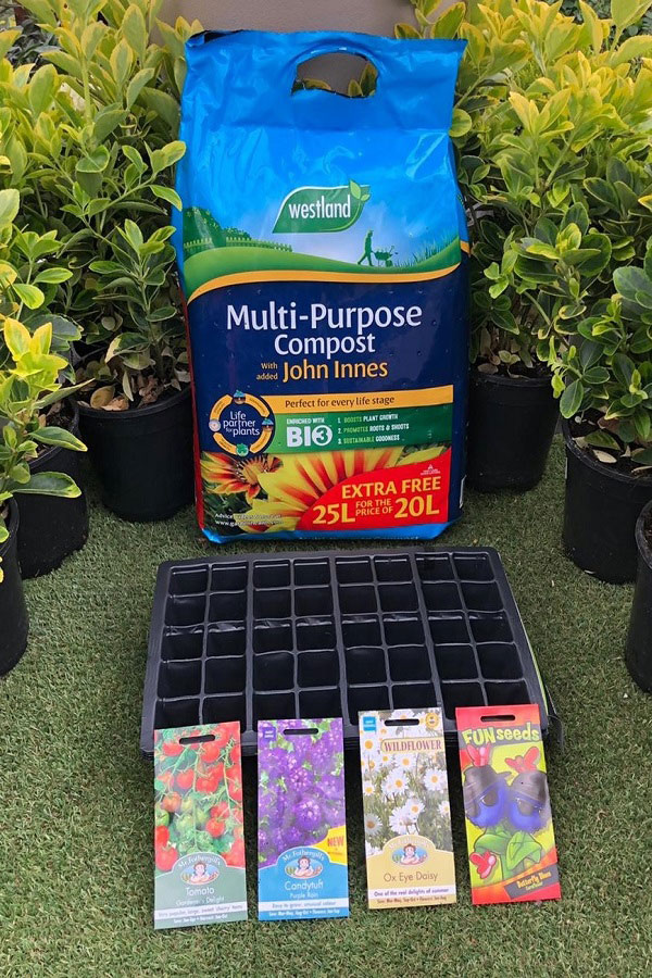 Little Growers Planting Kit