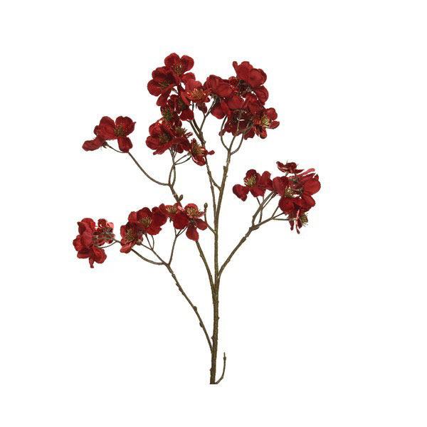 Velvet Dogwood Red