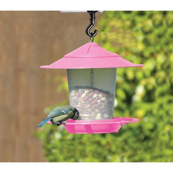 Lantern Bird Seed & Nut Feeder Pink