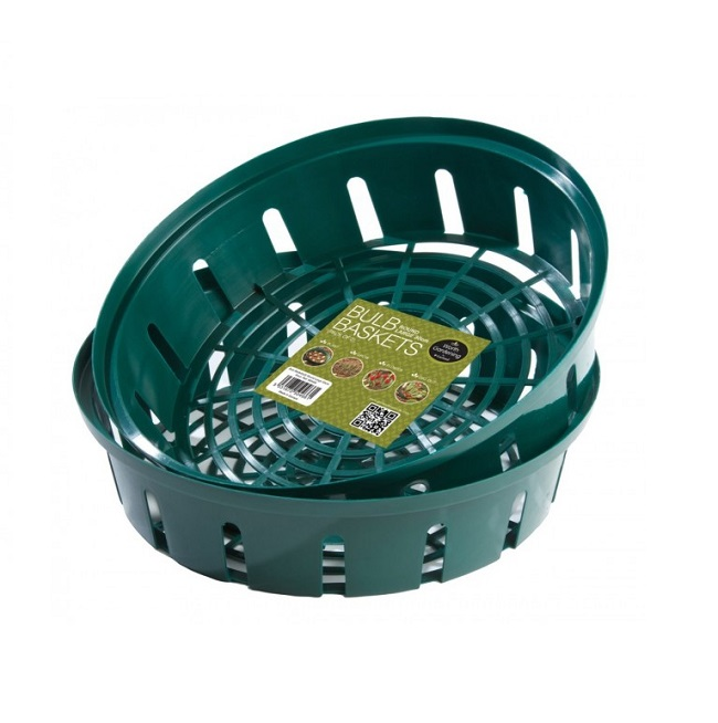 Bulb Baskets Round Large 30cm (Pack of 2)