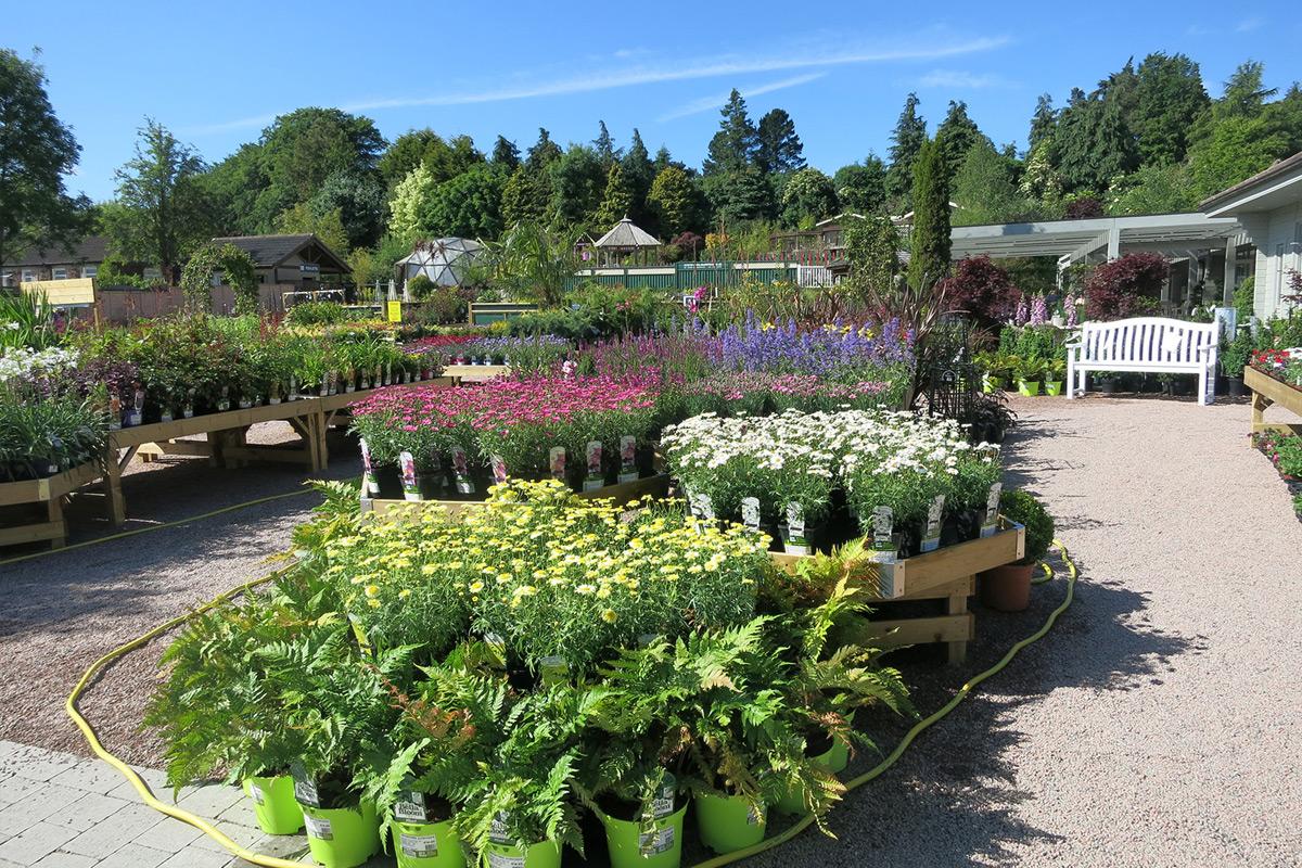Beautiful gardens to walk around and get ideas. - Traveller