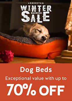 70% Off Dog Beds