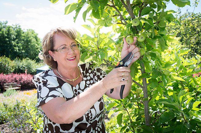 Rachel Doyle pruning fruit tree