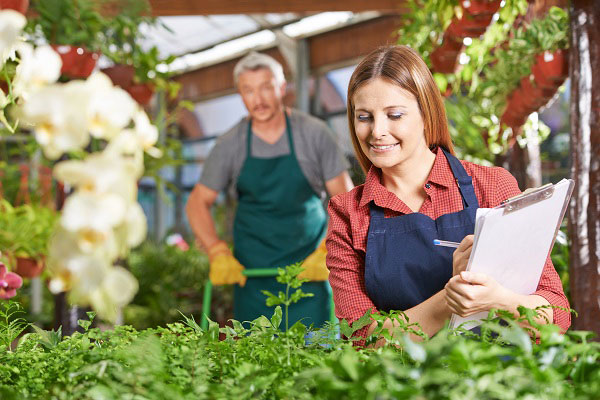 Lady with Clipboard in plants