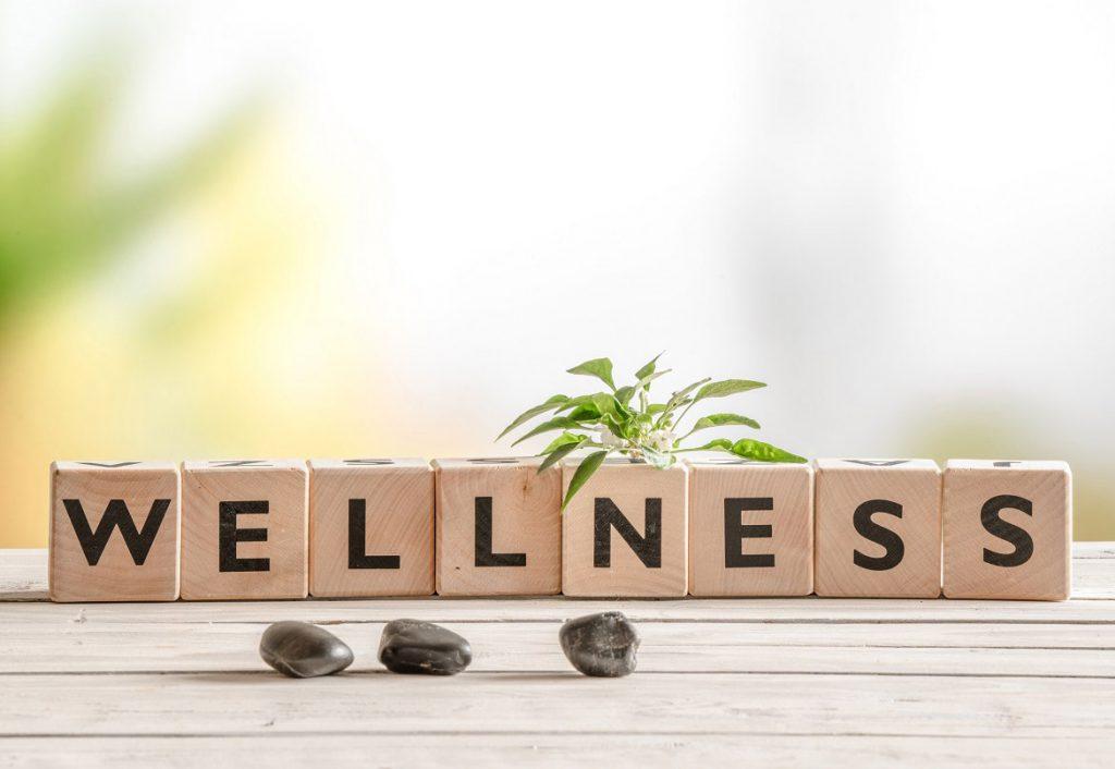 Wellness on bricks